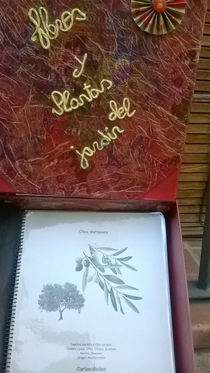 Archivo de plantas del jardin
