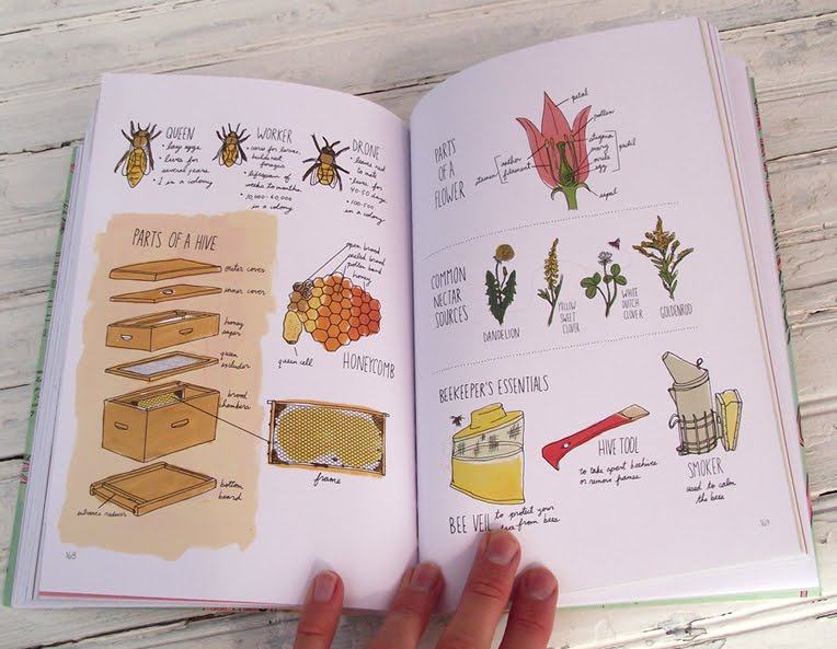 Farm Anatomy by Julia Rothman - The Spunky Coconut