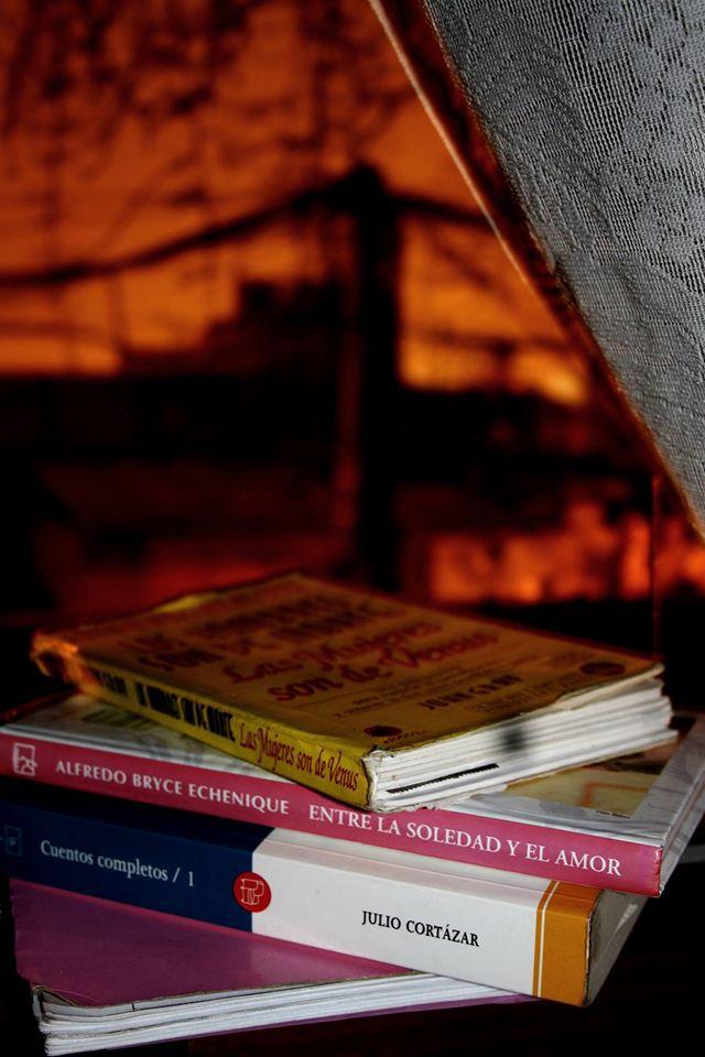 feria internacional del libro de lima 2014, libros julio cortazar