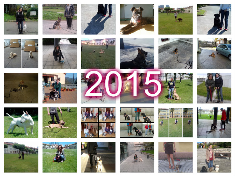 Trabajos 2015