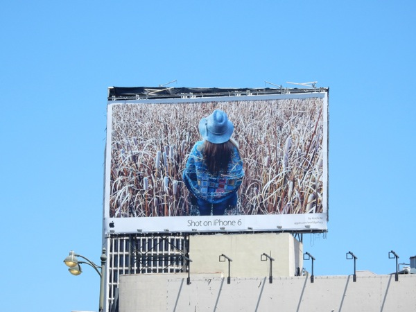 Shot on iPhone 6 Koichi M cornfield billboard