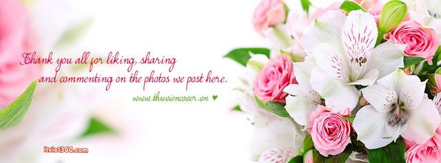 ảnh bìa Facebook đẹp nhất, cover FB hoa hồng đẹp