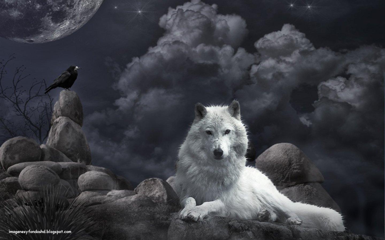 ¿Cuál es tu Patronus? Lobo-noche-dark-blanco-cuervo-raven-hd-nubes-wallpaper-alta-resolucion+%5Bimagenesyfondoshd.blogspot.com%5D