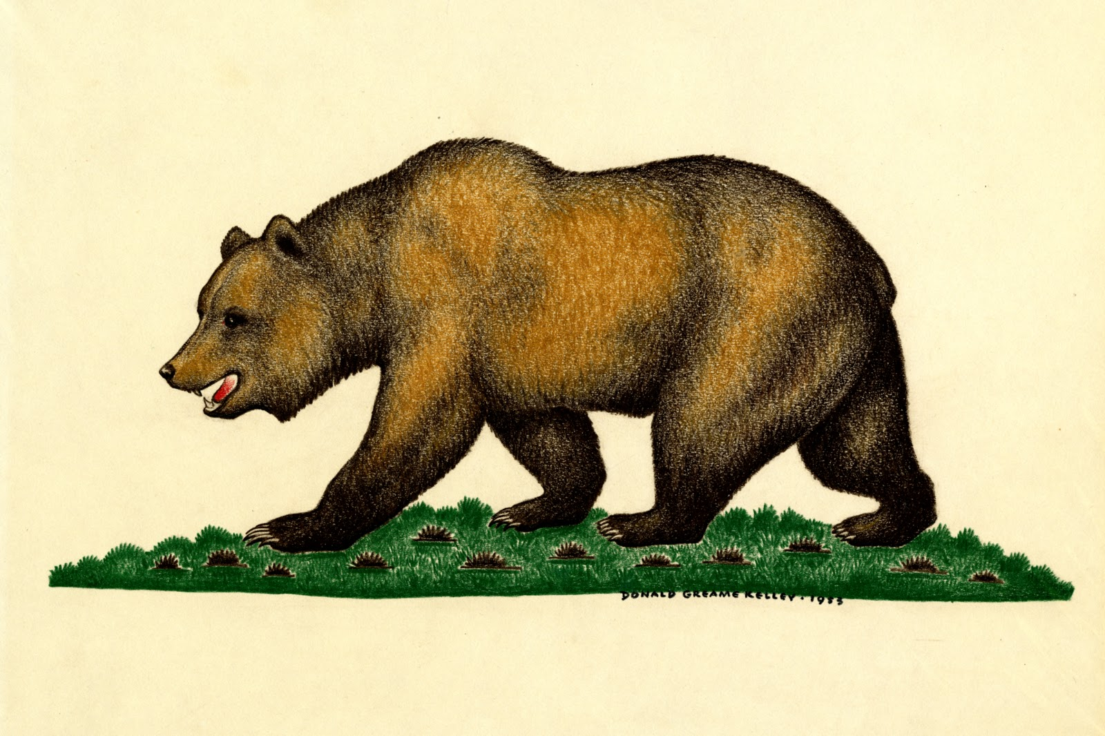 Donald Greame Kelley 1953 Grizzly Bear