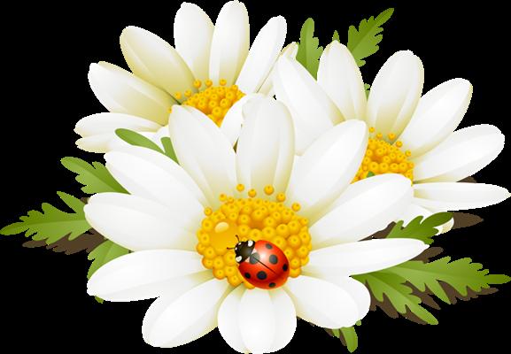 Summer Flowers Clip Art. Flowers Clip Art