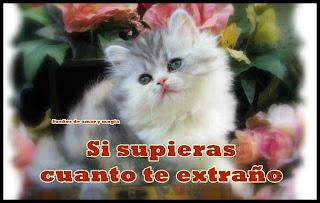 Imagen Si Supieras Cuanto Te Extraño (Imagenes para Facebook)