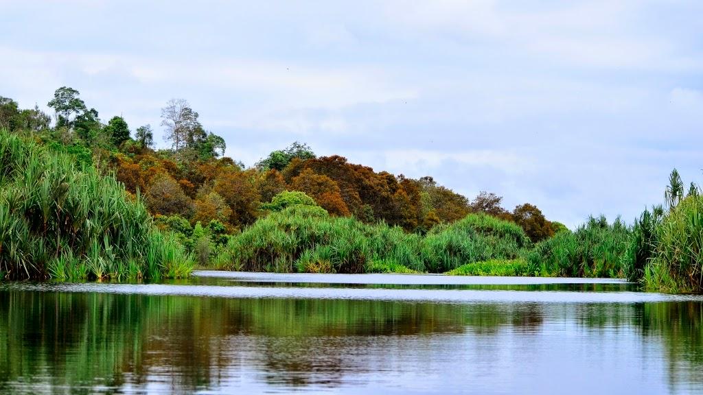 Cagar Biosfer Giam Siak Kecil - Bukit Batu Riau