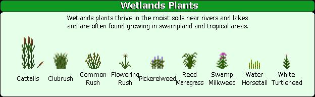 Plant Mega Pack Mod wetlands