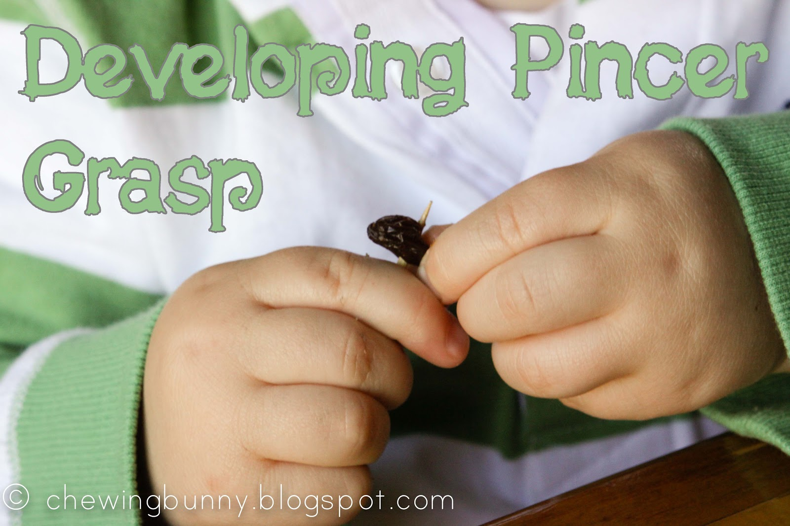 Development of Pincer Grasp Pincer Grasp Raisins And