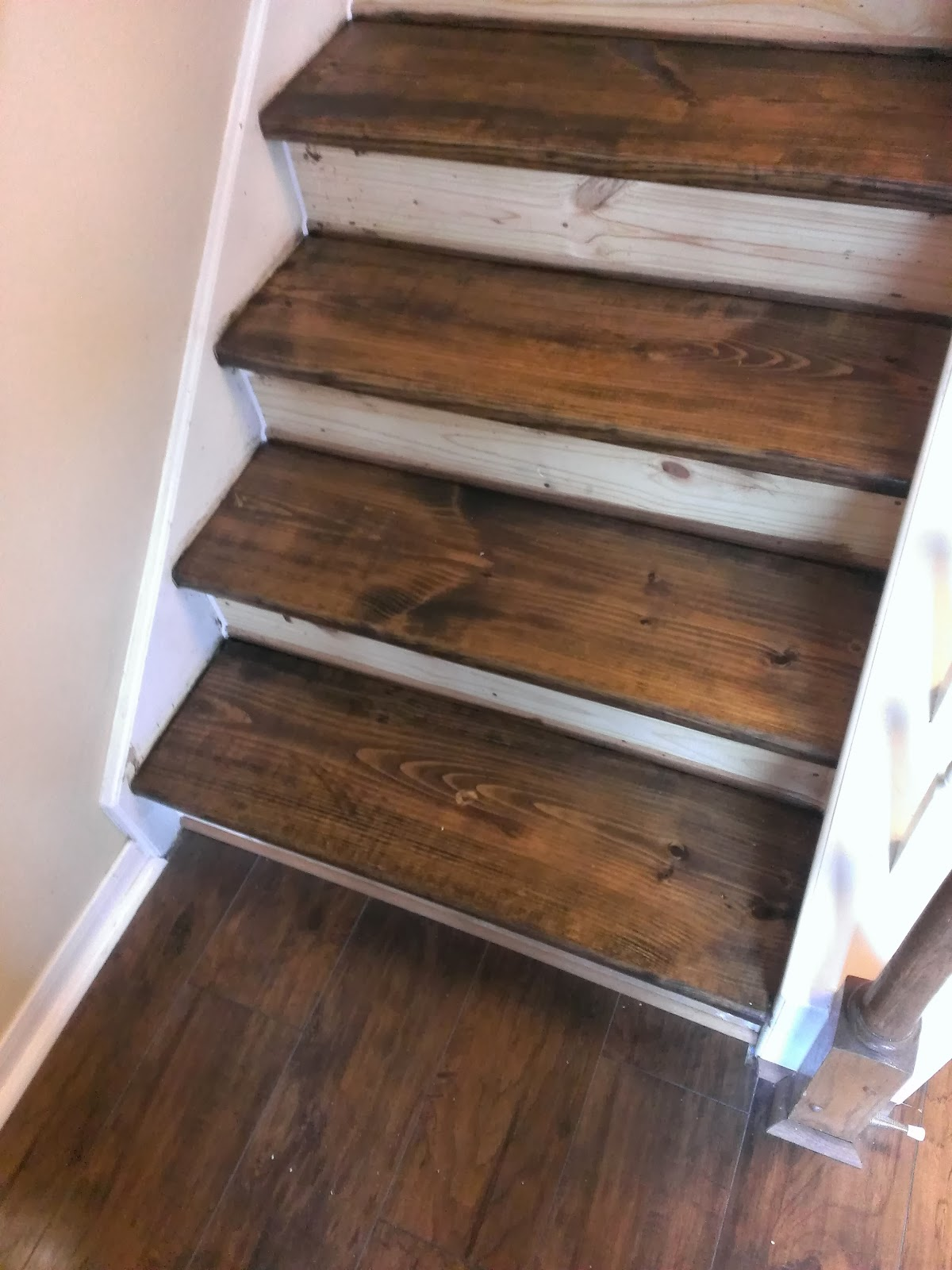 Small Dog Stairs