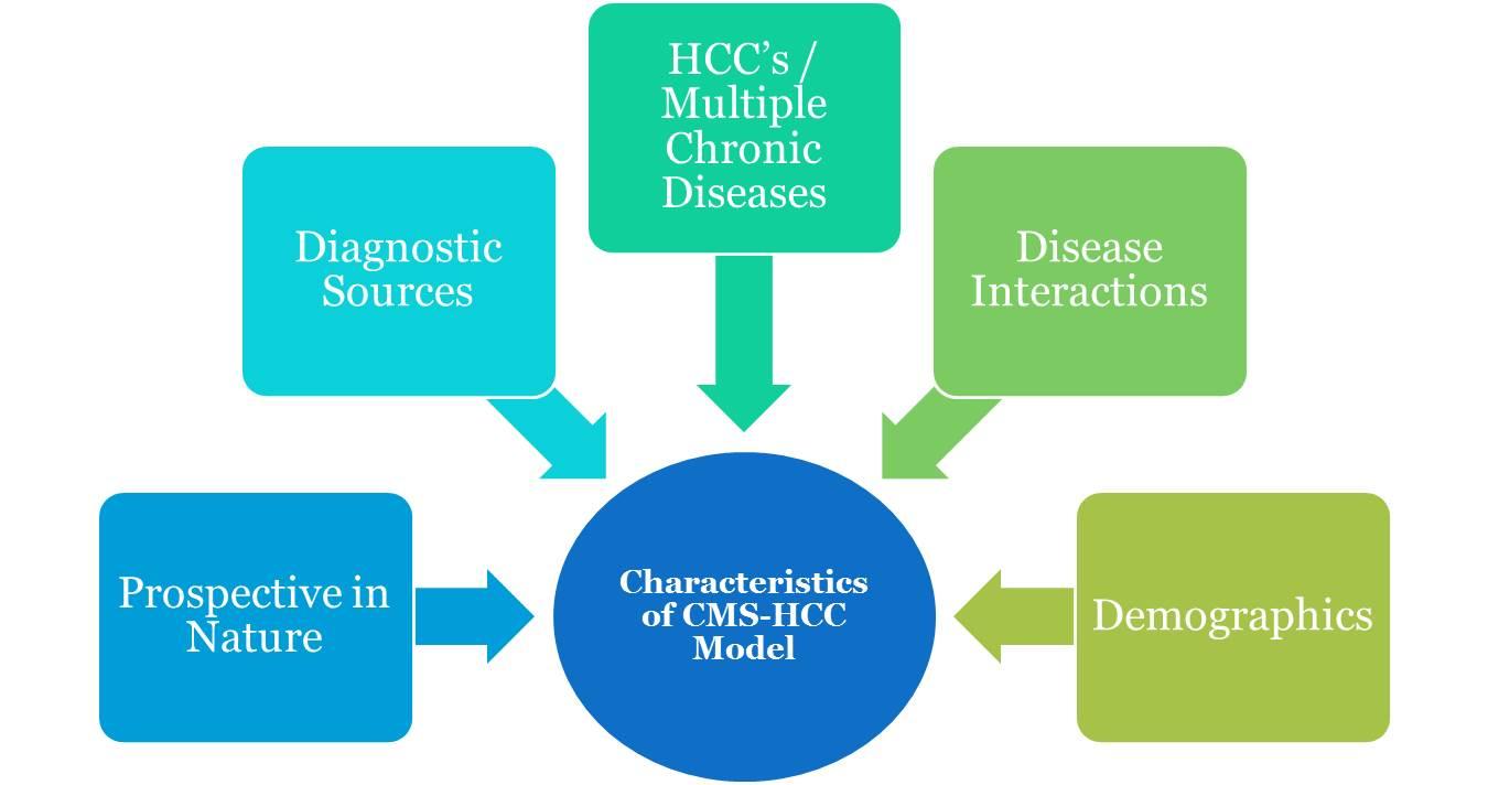 Characteristicsof CMS-HCC Model