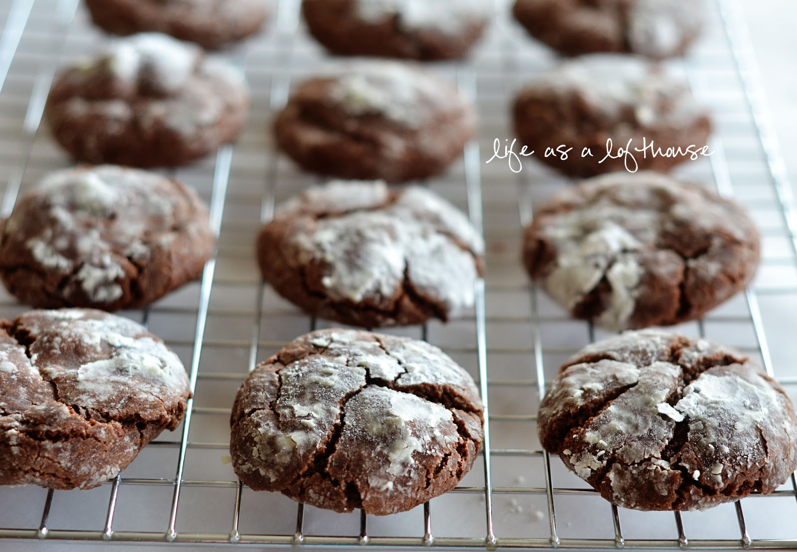 Chocolate Crinkle Cookies - Life In The Lofthouse