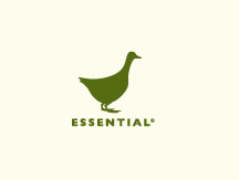 The Essential Ingredient