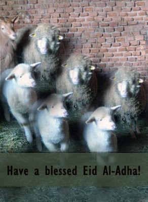 Eid Al Adha, Hajj, Eid Mubarak, Eid Fitr, Malaysia, Islam, Muslim, eid 2015, eid 2016