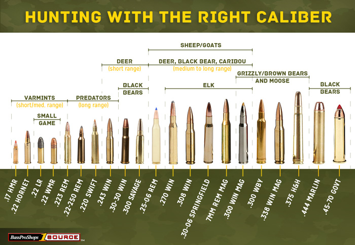 Hunting Caliber Suitable Game Chart