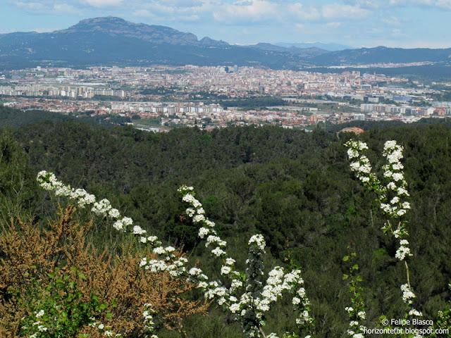 Sabadell desde Collserola