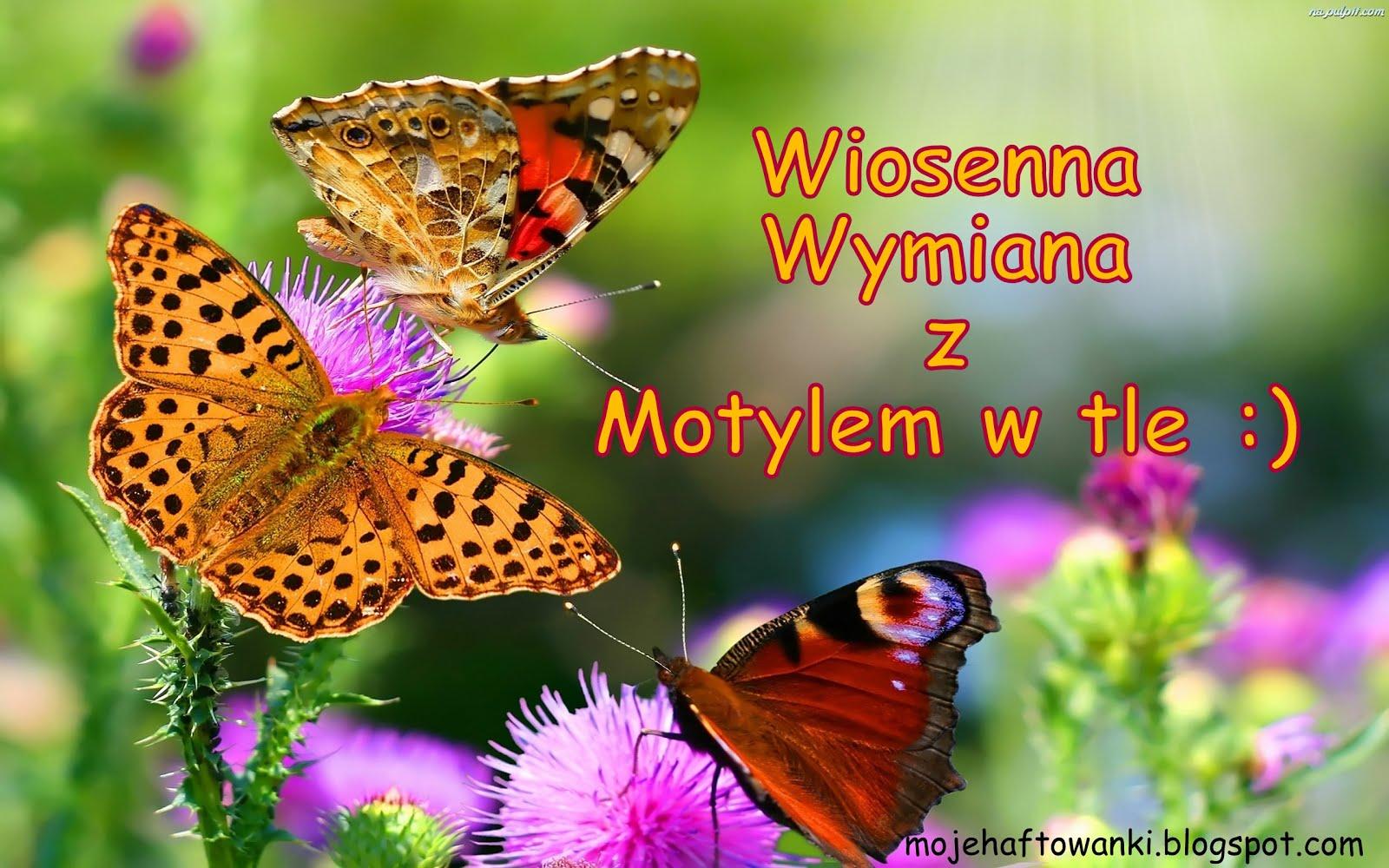 Wymianka z Motylem w tle