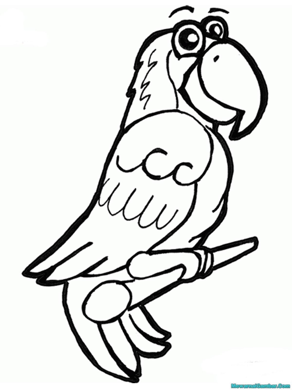 Download 15 Gambar Burung Untuk Diwarnai Lembar Mewarnai