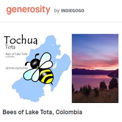 Apoyo al proyecto TOCHUA TOTA