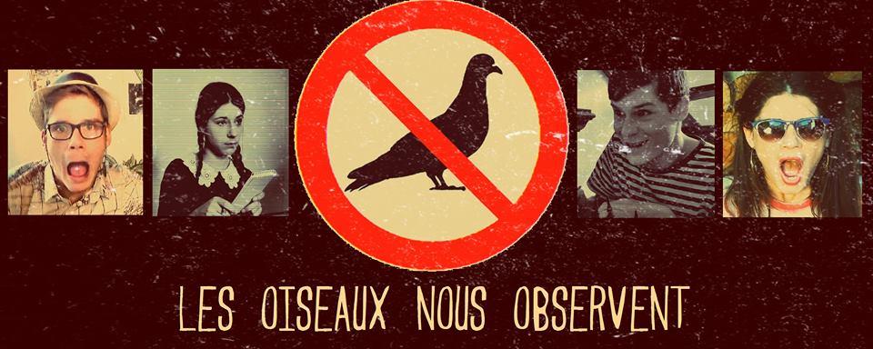 Conspiration et pigeons...