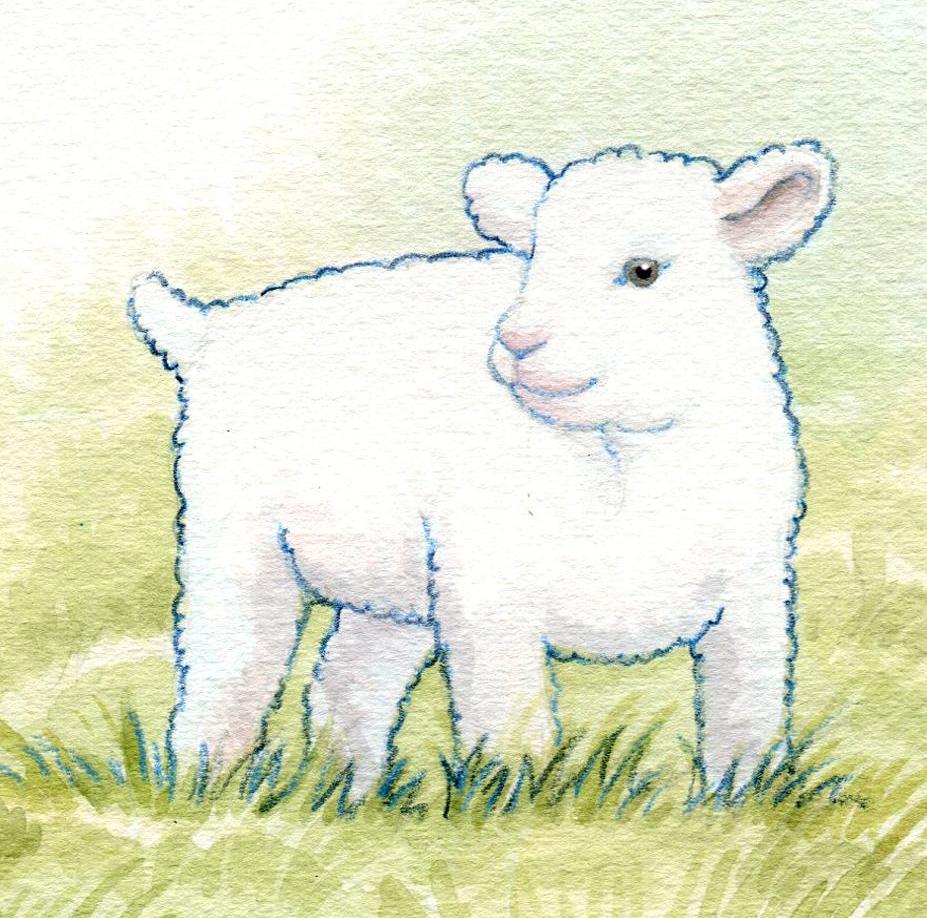 Focus on Jesus LambJesus Is the Lamb of God