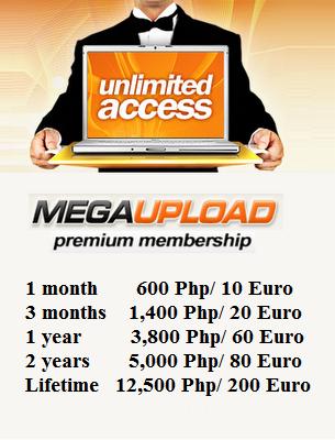 Megaupload: el rey de los hackers (JD)