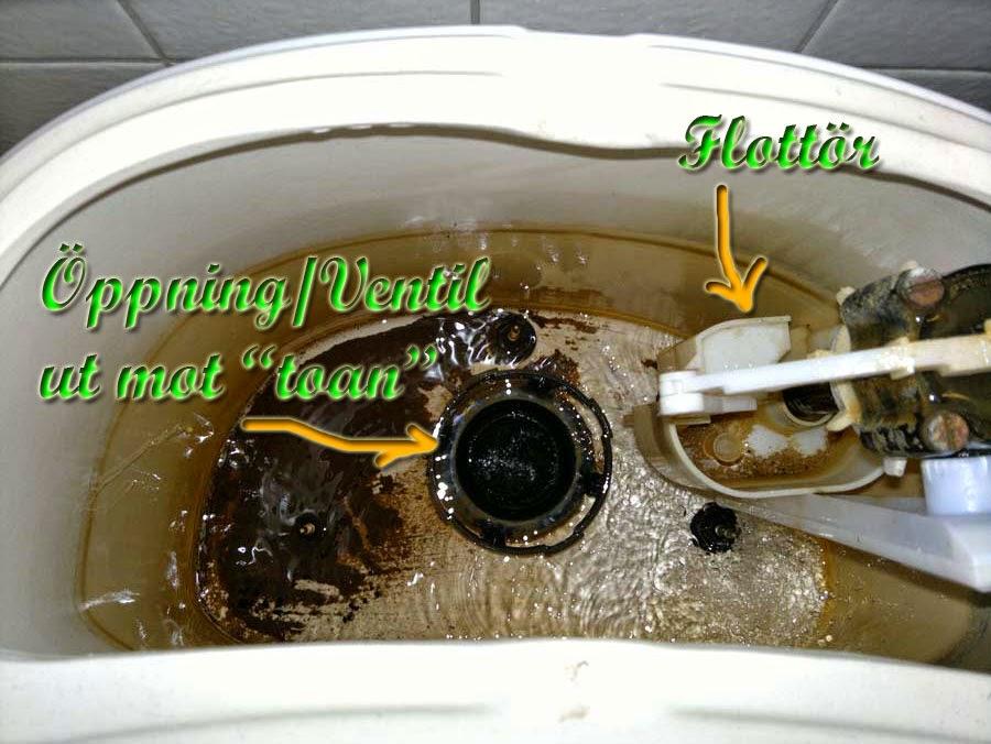 Rinner vatten under toaletten