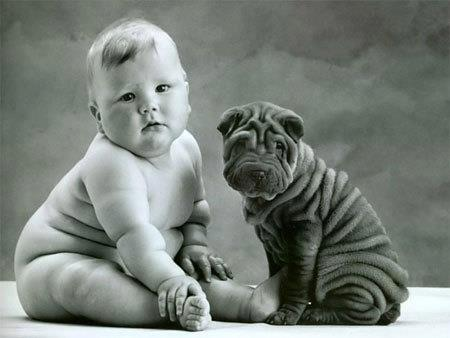 Black wrinkled puppy sitting with a baby