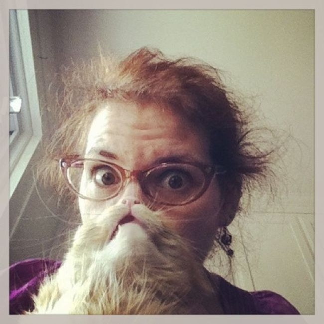 Cat Beards