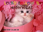 @30 june: Lucky Followers by Meoww Cat