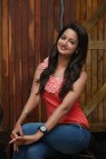 Cute Shanvi Glamorous Photos Gallery-thumbnail-13