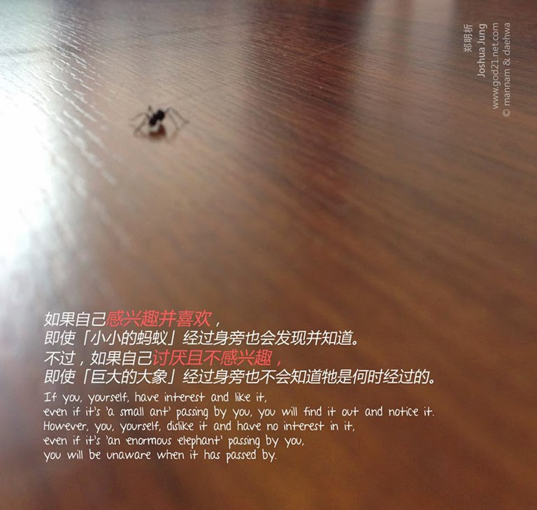 郑明析,郑约书亚,摄理教会,月明洞,蚂蚁,大象,兴趣,讨厌,Joshua Jung, Jeong Myeong Seok, Providence, Wol Myeong Dong, ant, elephant, interest, dislike