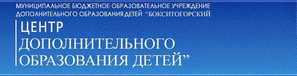 Бокситогорский  Центр дополнительного образования детей