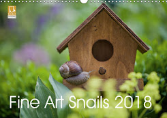 My Fine Art Snail 2018 Calendar