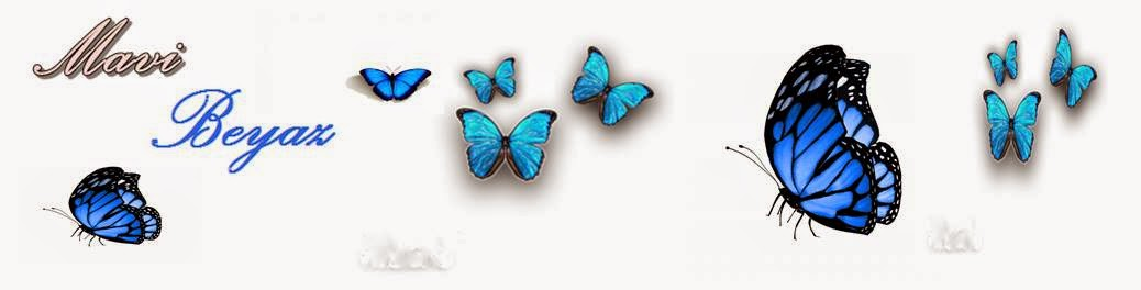 \ * * *  Mavi Beyaz  * * *  /