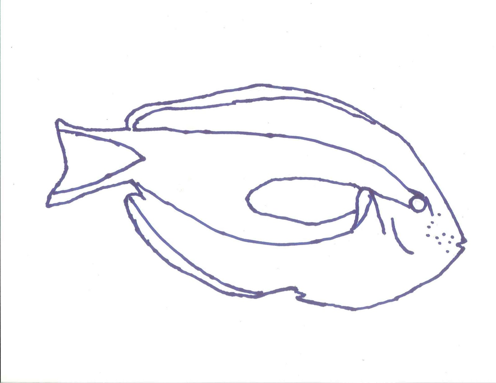 Line Drawing In Html : Fish line drawings th grade art