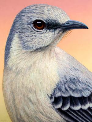 cuadros-con-aves