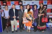 SIIMA 2014 press meet photos-thumbnail-1