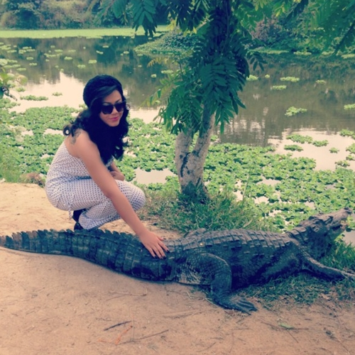 nadia buari crocodile