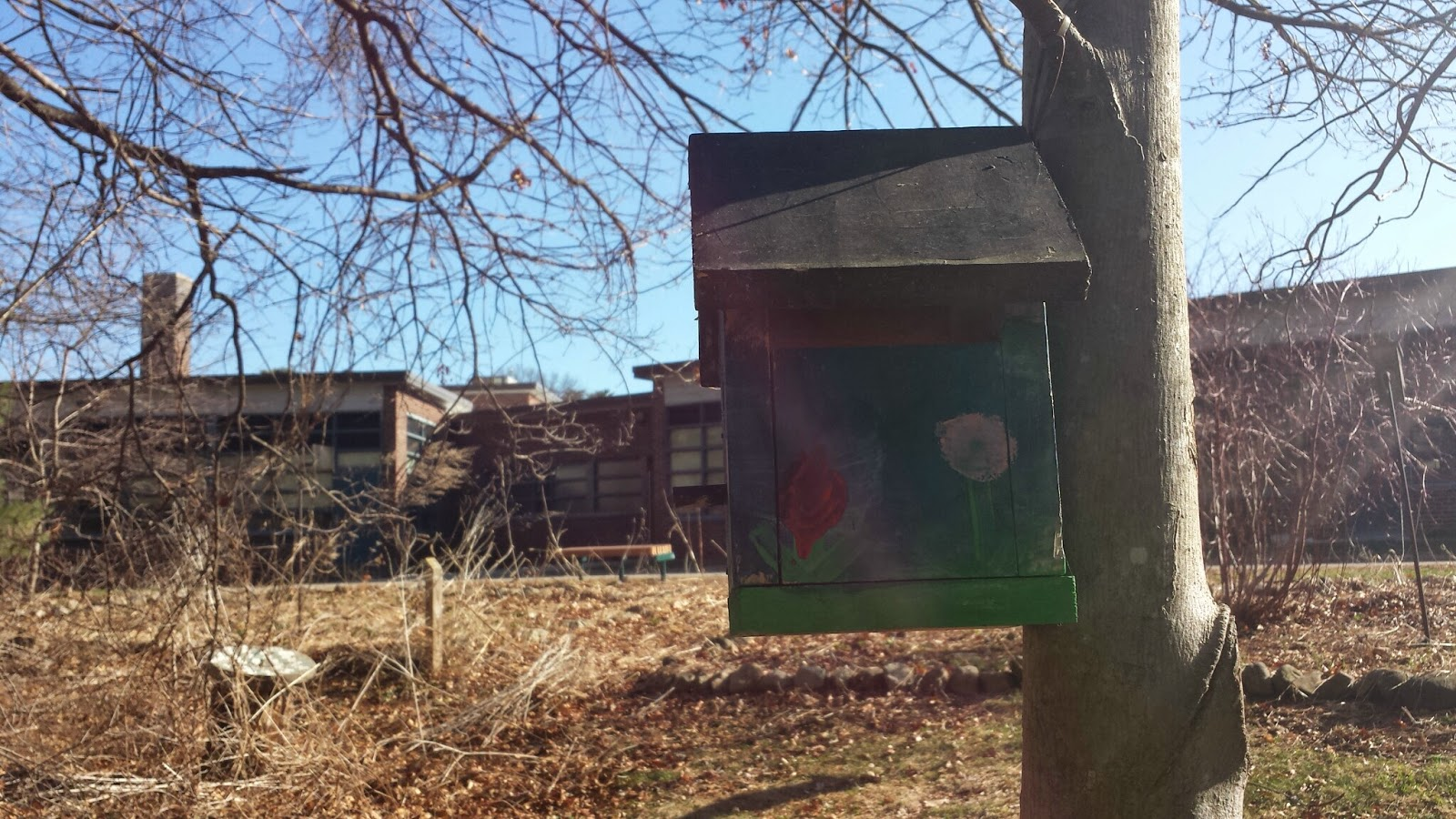 bird house on tree behind the Parmenter School building as the trail ends