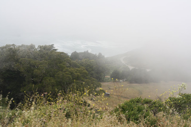route 1 pacific coast highway fog