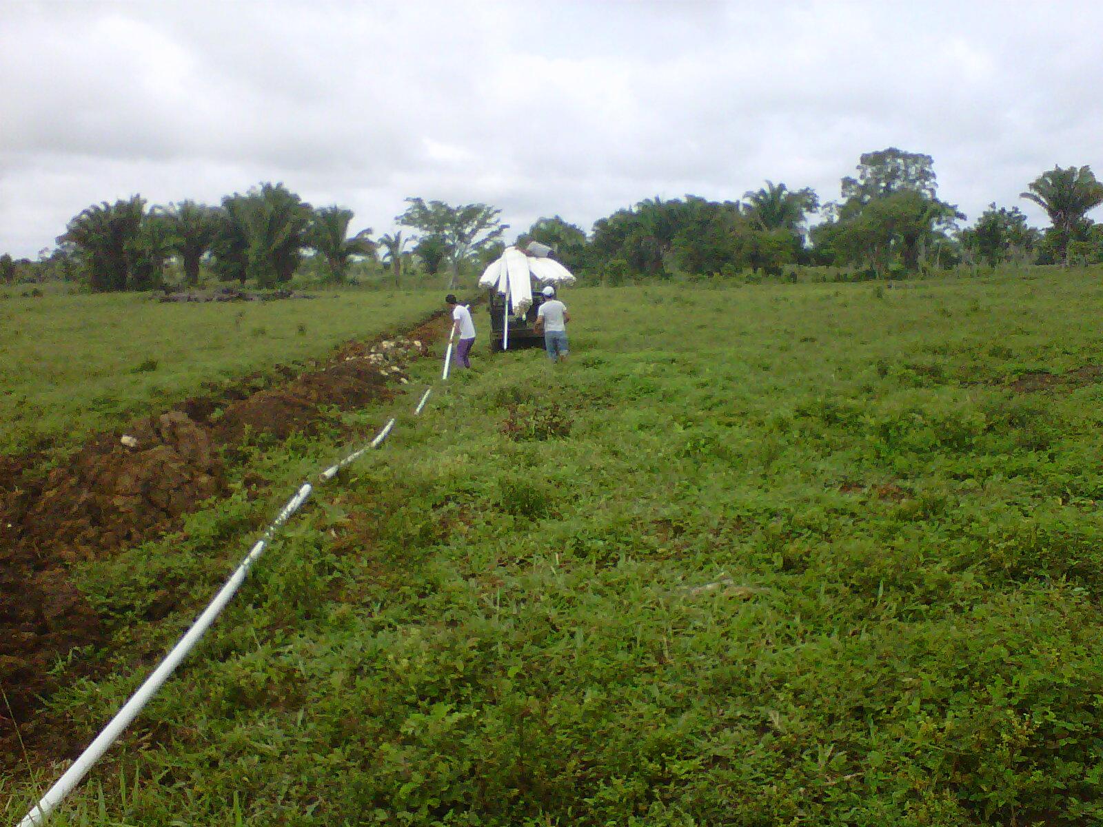 Bombas y riegos de guatemala riego por goteo para for Aspersores para riego