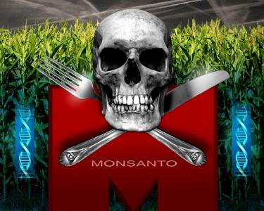 7 Mitos Sobre los Alimentos Transgénicos y Monsanto