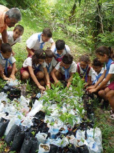 Pioneros fieles guardianes del medio ambiente