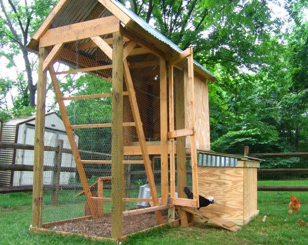 Learn how to make a chicken house for little money