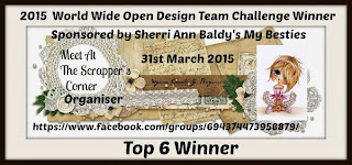 2015 World Wide Open Design Team Challenge