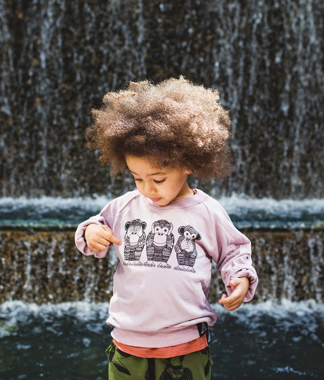 Tres Monkes sweatshirt by Quinn and Fox Autumn-Winter 2014 kidswear collection