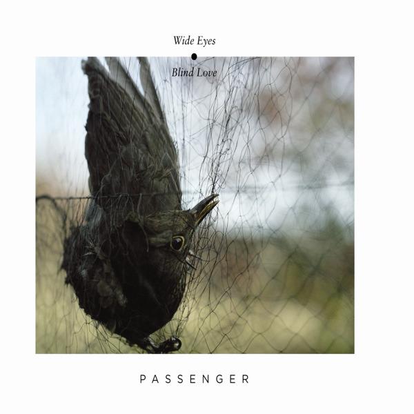 Passenger - Wide Eyes Blind Love Cover