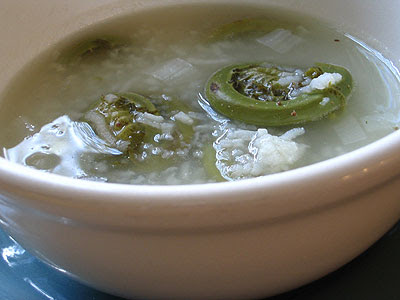Lemon-Rice Fiddlehead Soup