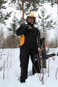 Tamperelainen talonmiespalvelu toimii kuin metsuri tarvittaessa pihanne puustoa karsien harventaen
